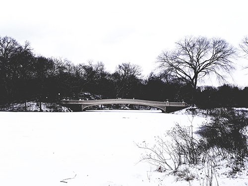 Invierno en Nueva York - Vista de lago congelado en Central Park - Foto de Andrea Hoare Madrid