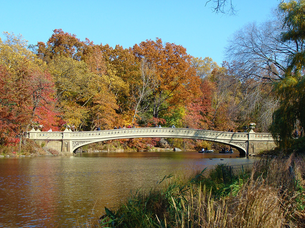 Bow Bridge de Central Park, Manhattan - Foto de Andrea Hoare Madrid