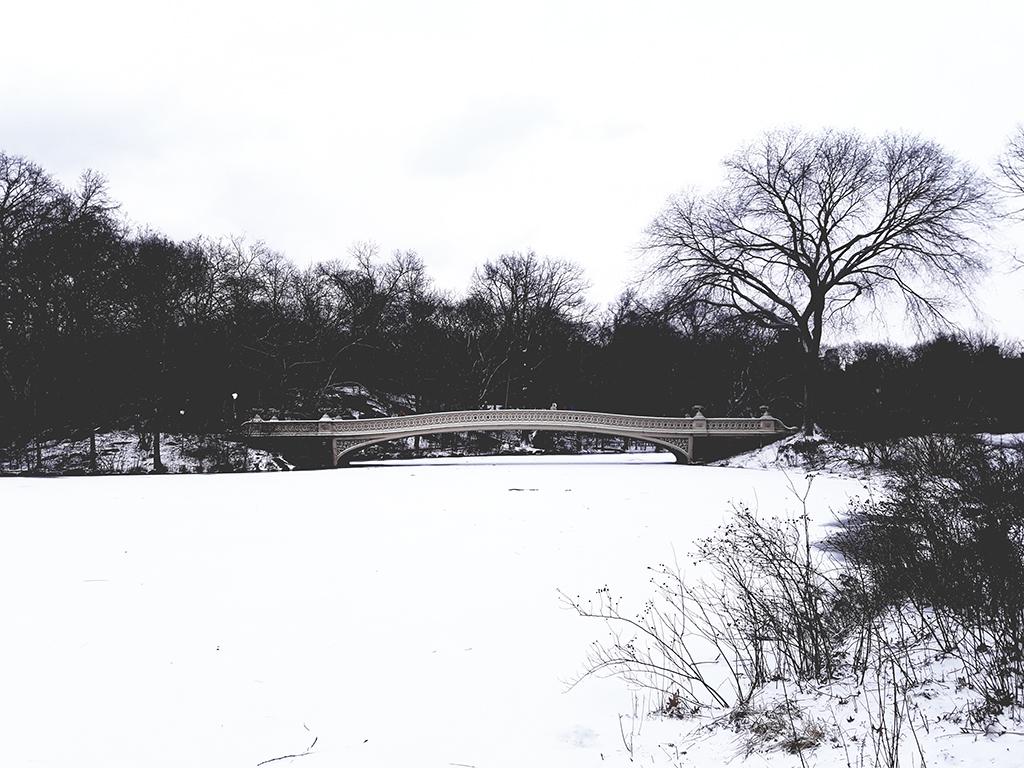 Bow Bridge sobre The Pond congelado. Febrero en Central Park - Foto de Andrea Hoare Madrid
