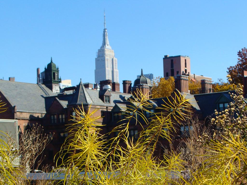 Vista del Empire State desde el High Line Park - Foto de Andrea Hoare Madrid