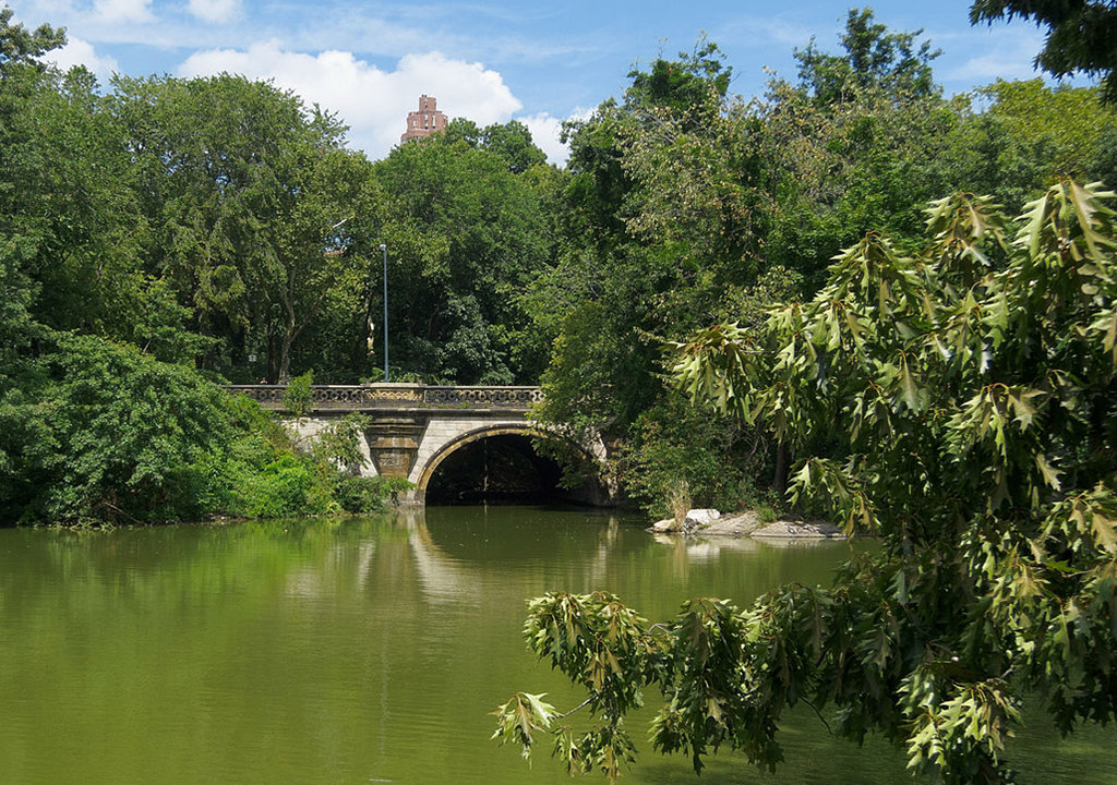 Foto del Balcony Bridge de King of Hearts / CC BY-SA (https://creativecommons.org/licenses/by-sa/3.0) vía Wikimedia disponible en https://commons.wikimedia.org/wiki/File:Central_Park_New_York_August_2012_007.jpg