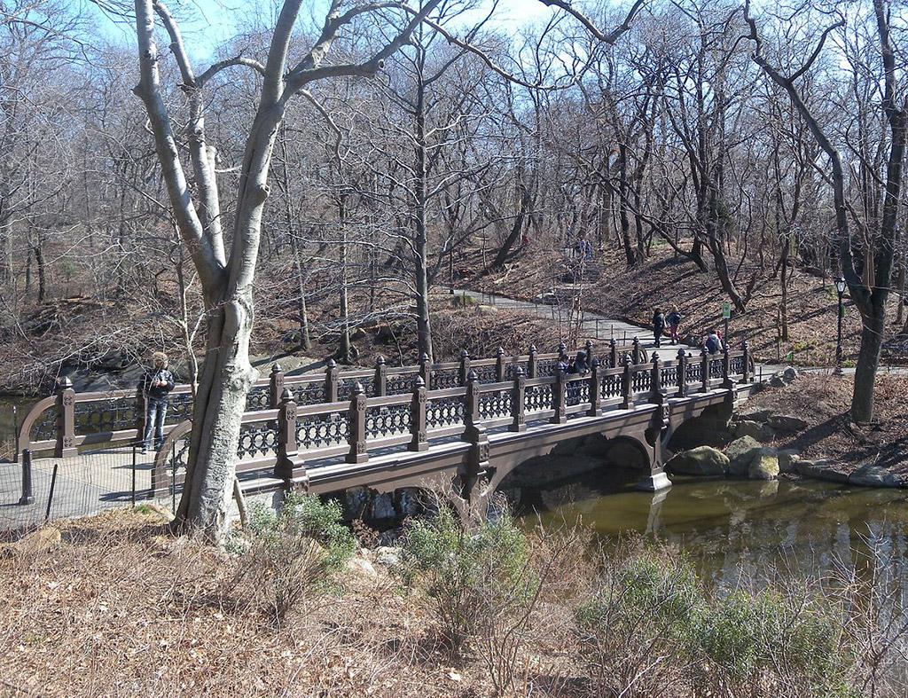Foto del Bank Rock Bridge de Jim.henderson / CC0 - Dominio Público vía Wikimedia disponible en https://commons.wikimedia.org/wiki/File:Oak_Bridge_March_sun_jeh.jpg