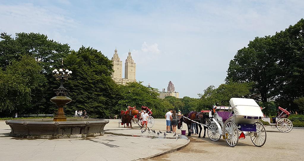 Coches de caballos en Central Park - Foto de AHM
