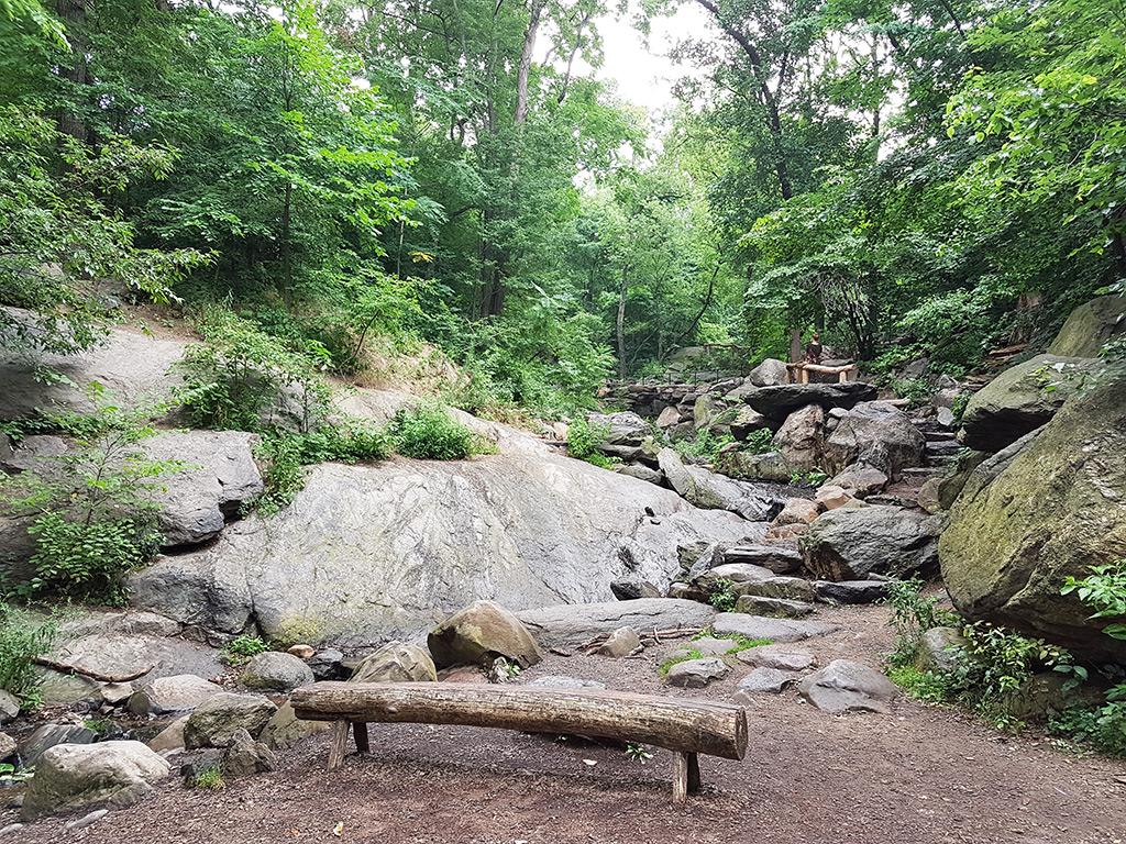 Senderos y bancas del Santuario de la Naturaleza Hallet en Central Park - Foto de AHM
