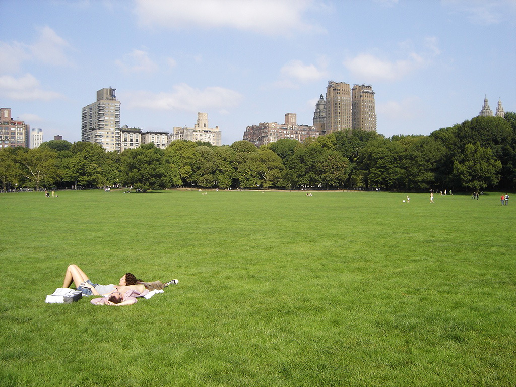 Praderas de Central Park, gente tomando sol en verano - Foto de AHM