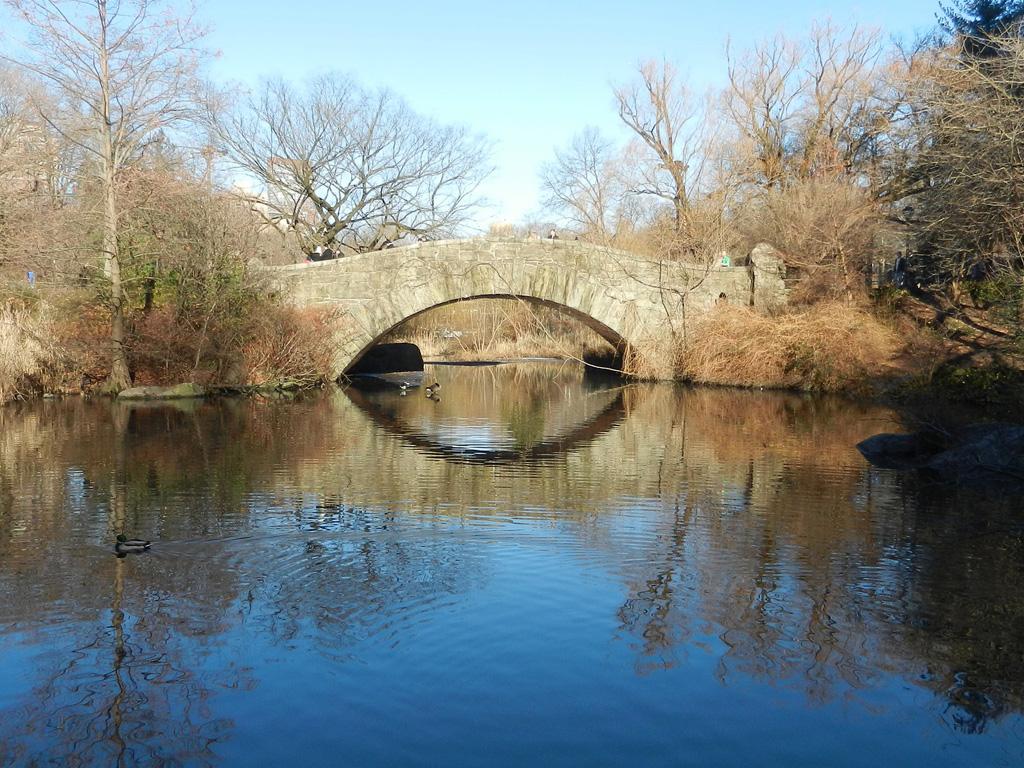 Foto de el Gapstow Bridge en la laguna The Pond de Central Park - Foto de nash78690 de Dominio Público, vía Pixabay disponible en https://pixabay.com/es/photos/naturaleza-central-park-paisaje-5204320/