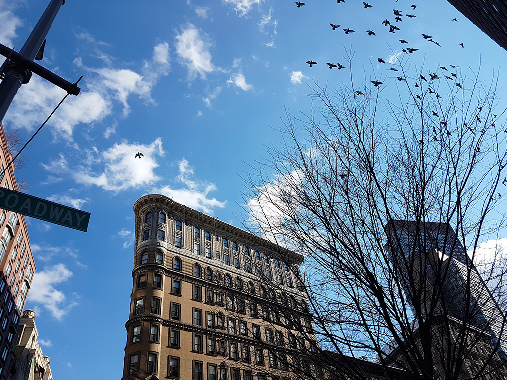 Edificios del Upper West Side, cielo azul y aves volando - Foto de Andrea Hoare Madrid