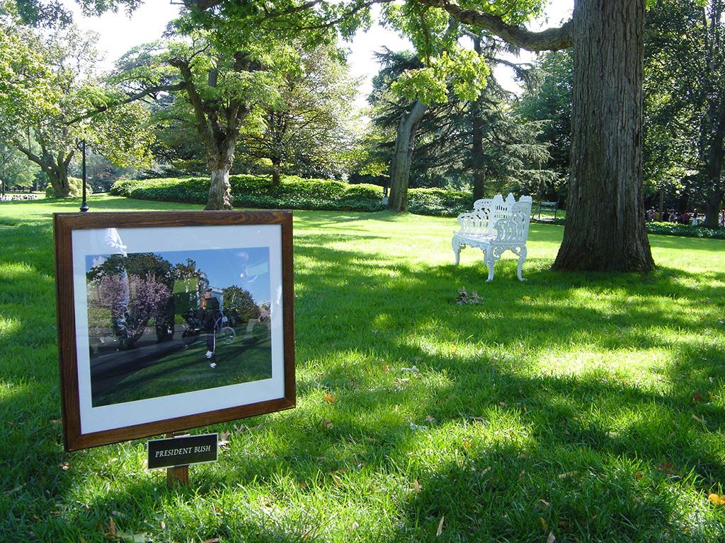 Recorrido por los jardines de la Casa Blanca. Árbol sembrado por el presidente Bush - Foto de AHM