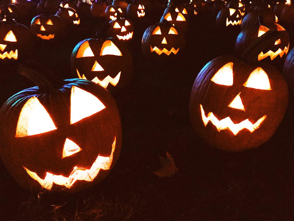 "Calabazas de Halloween en Sleppy Hollow. <span>Photo by <a href=""https://unsplash.com/@rooney?utm_source=unsplash&utm_medium=referral&utm_content=creditCopyText"">Taylor  Rooney</a> on <a href=""https://unsplash.com/s/photos/sleepy-hollow?utm_source=unsplash&utm_medium=referral&utm_content=creditCopyText"">Unsplash</a></span>"