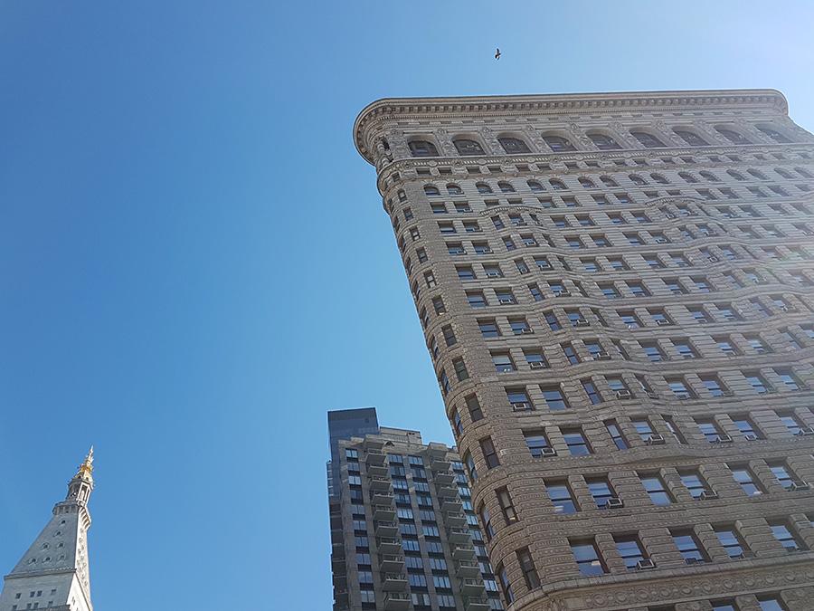 Vista del Flatiron Building desde el Madison Square Park un día de invierno. Punto de partida del itinerario por Nueva York en 7 días - Foto de Andrea Hoare Madrid