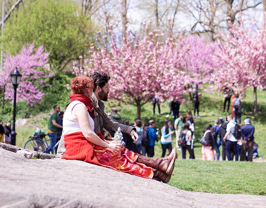 Gente disfrutando el buen clima de la primavera en Nueva York en Central Park - Foto de Erin Song en Unsplash