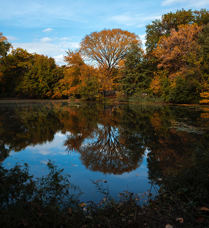 Laguna de Prospect Park en otoño - Foto de Pierre Bouyer en Unsplash disponible en https://unsplash.com/photos/EiStW8MCEn8