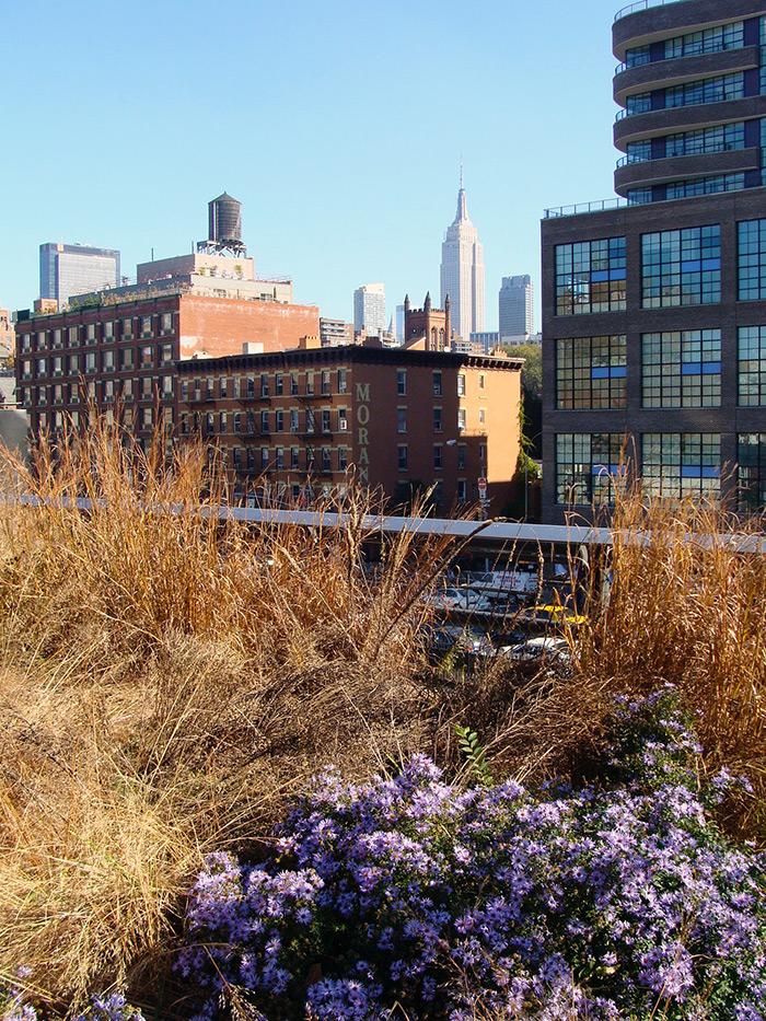 Empire State visto desde el High Line Park - Foto de Andrea Hoare Madrid