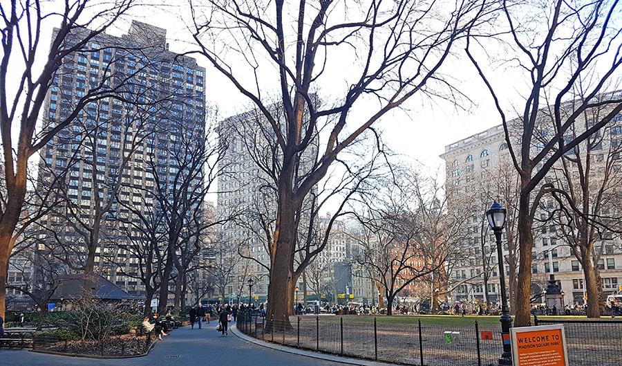 Madison Square Park en invierno, buen lugar para ver el Flatiron Building - Foto de Andrea Hoare Madrid