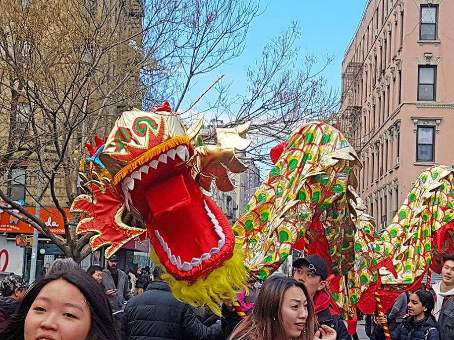 Jóvenes haciendo danzar a uno de los tradicionales dragones de tela durante la celebración del Año Nuevo Chino -año lunar chino- en el Chinatown de Nueva York - Foto de Andrea Hoare Madrid