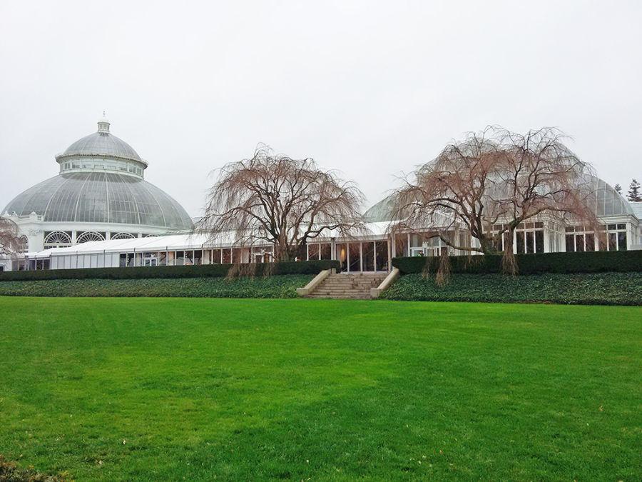 Palacio de Cristal - Invernadero del Jardín Botánico de Nueva York en el Bronx - Foto de Andrea Hoare Madrid