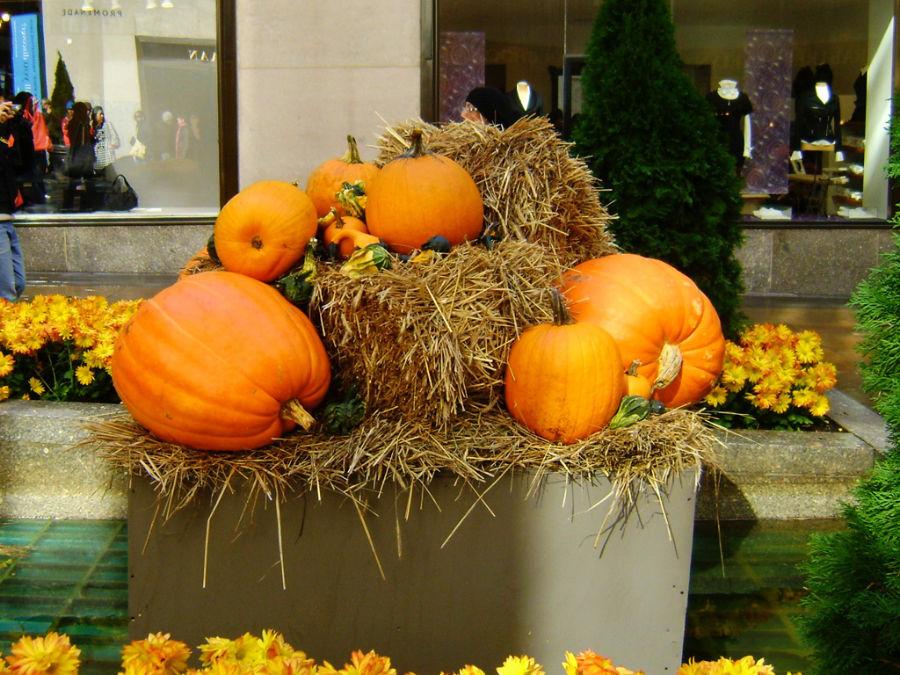 Decoración de Halloween (calabazas) en el Rockefeller Center - Foto de Andrea Hoare Madrid