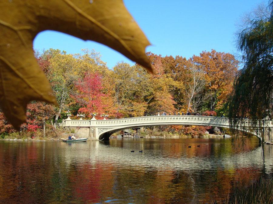 The Pond y Bow Bridge en Central Park en otoño - Foto de Andrea Hoare Madrid